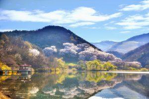 Koszty leczenia w Korei Południowej